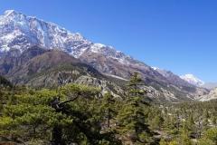 166-Nepal-annapurna-copyright-piotr-nogal