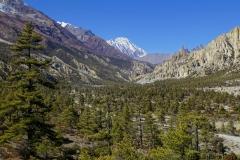 169-Nepal-annapurna-copyright-piotr-nogal
