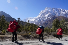 173-Nepal-annapurna-copyright-piotr-nogal