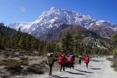 174-Nepal-annapurna-copyright-piotr-nogal