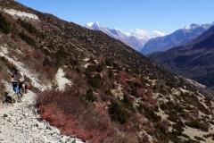 292-Nepal-annapurna-copyright-piotr-nogal