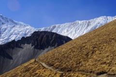 340-Nepal-annapurna-copyright-piotr-nogal
