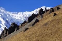 345-Nepal-annapurna-copyright-piotr-nogal