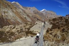 377-Nepal-annapurna-copyright-piotr-nogal