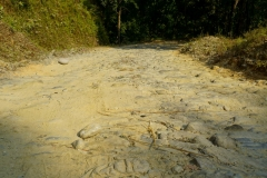 534-Nepal-annapurna-copyright-piotr-nogal