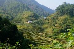 535-Nepal-annapurna-copyright-piotr-nogal