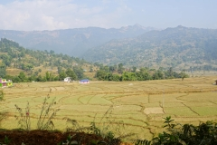 539-Nepal-annapurna-copyright-piotr-nogal