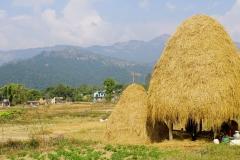 542-Nepal-annapurna-copyright-piotr-nogal
