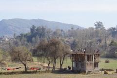 552-Nepal-annapurna-copyright-piotr-nogal