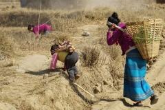 557-Nepal-annapurna-copyright-piotr-nogal