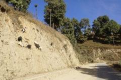 558-Nepal-annapurna-copyright-piotr-nogal
