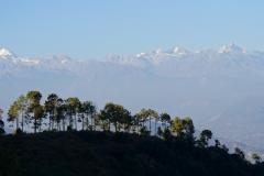 603-Nepal-annapurna-copyright-piotr-nogal