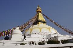 625-Nepal-annapurna-copyright-piotr-nogal