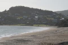 neuseeland nordinsel copyright piotr nogal 036