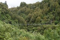 neuseeland nordinsel copyright piotr nogal 080
