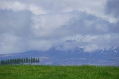 neuseeland nordinsel copyright piotr nogal 082