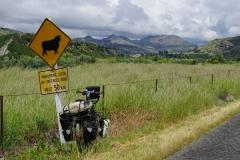 neuseeland sudinsel copyright piotr nogal 013