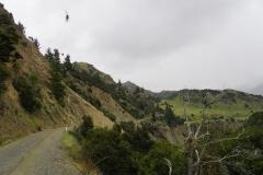 neuseeland sudinsel copyright piotr nogal 015