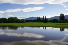 neuseeland sudinsel copyright piotr nogal 029