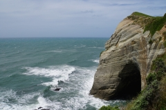 neuseeland sudinsel copyright piotr nogal 034