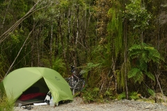 neuseeland sudinsel copyright piotr nogal 075