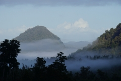 neuseeland sudinsel copyright piotr nogal 091