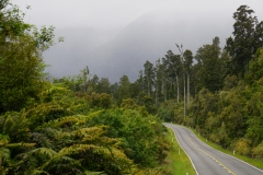 neuseeland sudinsel copyright piotr nogal 108