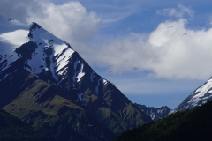 neuseeland sudinsel copyright piotr nogal 150
