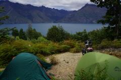 neuseeland sudinsel copyright piotr nogal 176