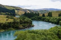 neuseeland sudinsel copyright piotr nogal 198