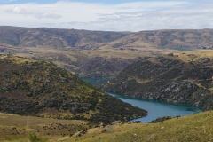 neuseeland sudinsel copyright piotr nogal 200