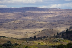 neuseeland sudinsel copyright piotr nogal 209