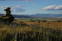 neuseeland sudinsel copyright piotr nogal 215