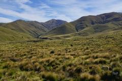 neuseeland sudinsel copyright piotr nogal 254