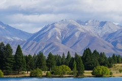 neuseeland sudinsel copyright piotr nogal 282