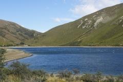 neuseeland sudinsel copyright piotr nogal 320