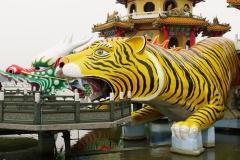 taiwan copyright piotr nogal 157