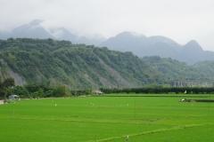 taiwan copyright piotr nogal 244