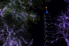 taiwan copyright piotr nogal 343