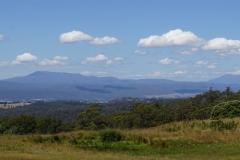 tasmanien 008 copyright piotr nogal