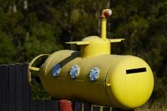 tasmanien 037 copyright piotr nogal