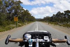 tasmanien 060 copyright piotr nogal