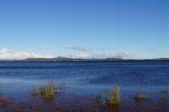 tasmanien 062 copyright piotr nogal