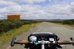 tasmanien 072 copyright piotr nogal