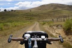 tasmanien 081 copyright piotr nogal