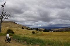 tasmanien 084 copyright piotr nogal