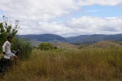 tasmanien 087 copyright piotr nogal