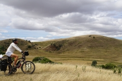 tasmanien 091 copyright piotr nogal