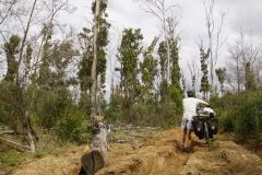 tasmanien 097 copyright piotr nogal