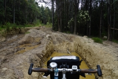 tasmanien 105 copyright piotr nogal